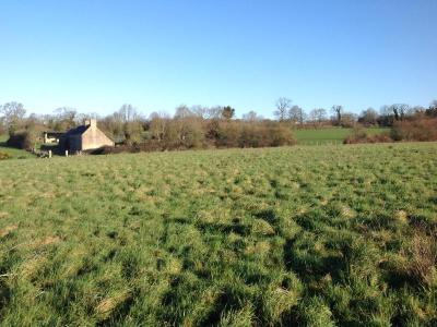 Terrain a batir a vendre Bayeux 14400 Calvados  37100 euros