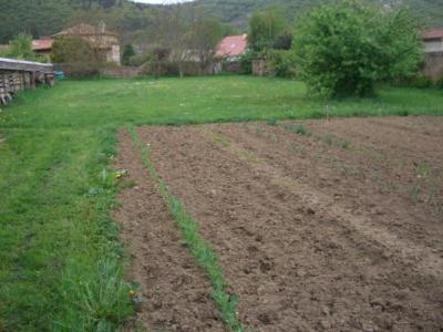 Terrain a batir a vendre Massiac 15500 Cantal  37100 euros