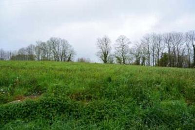 Terrain a batir a vendre Rieupeyroux 12240 Aveyron 5500 m2  48752 euros