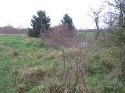 Terrains de loisirs bois etangs a vendre Perthes 52100 Haute-Marne 26890000 m2  5800 euros