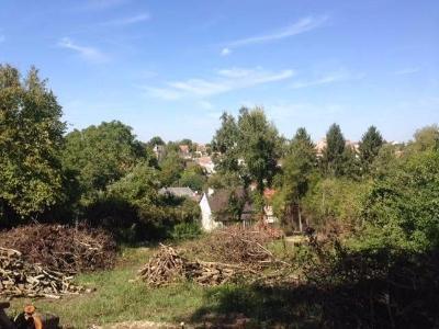 Terrain a batir a vendre Ville-en-Tardenois 51170 Marne 1113 m2  83800 euros