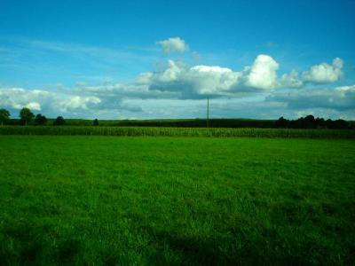 Terrain a batir a vendre Parigné 35133 Ille-et-Vilaine 3270 m2  45050 euros