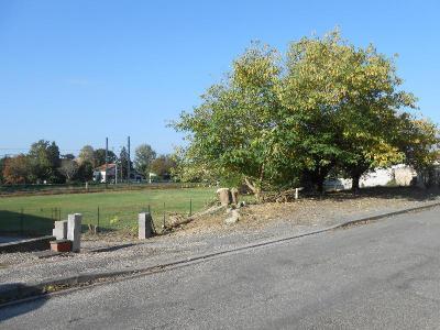 Terrain a batir a vendre Malause 82200 Tarn-et-Garonne  31800 euros