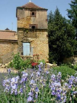 propriete a vendre La Vineuse 71250 Saone-et-Loire 600 m2  850000 euros