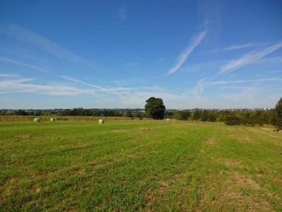 Terrain a batir a vendre Javené 35133 Ille-et-Vilaine 376 m2  34931 euros