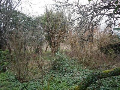 Maison a vendre Charnizay 37290 Indre-et-Loire 41 m2 2 pièces 53000 euros