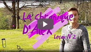 La chronique d'Alex leçon n°2